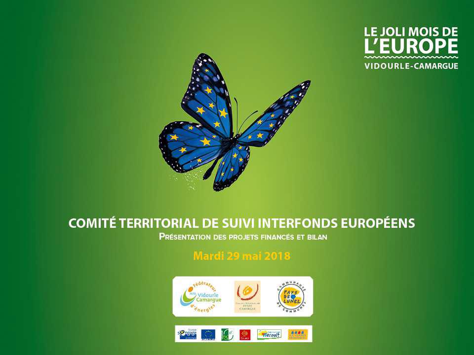 commité territorial de suivi interfonds européens